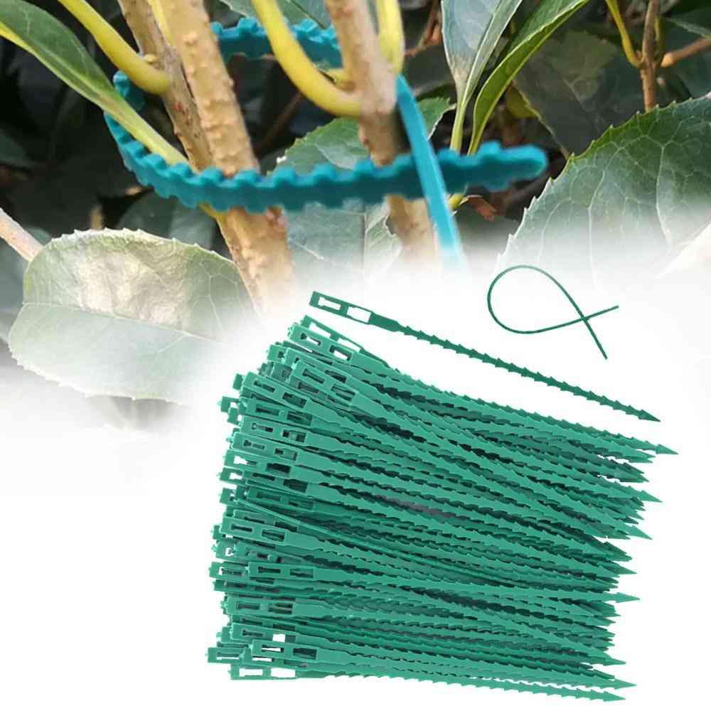 Fishbone Spur Green Landscape - Reusable Garden Plastic Plant Belt, Tie Garden Fishbone Band