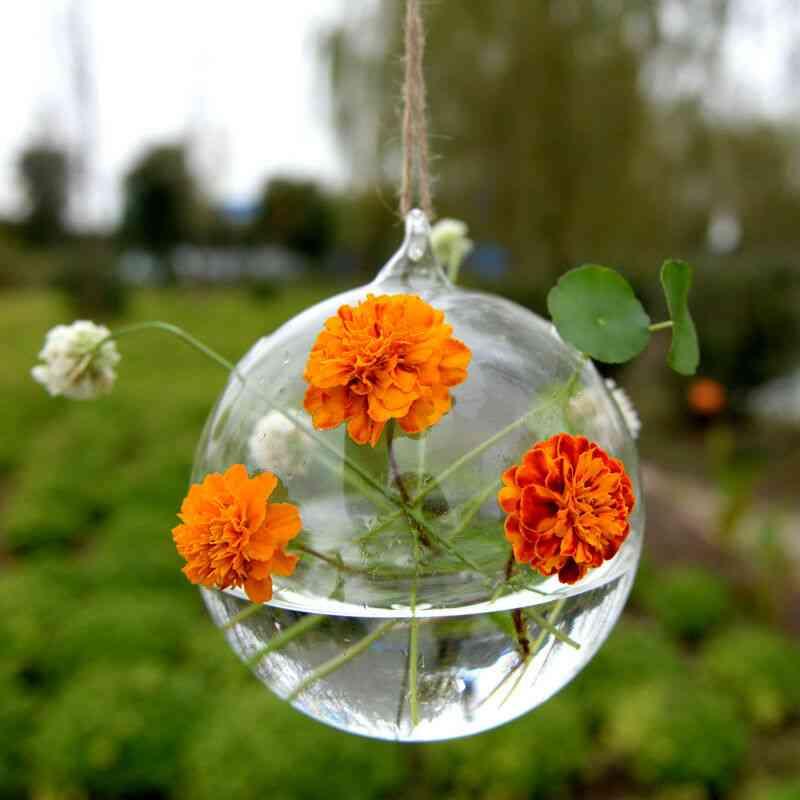 Creative Hanging Glass Wall Vase