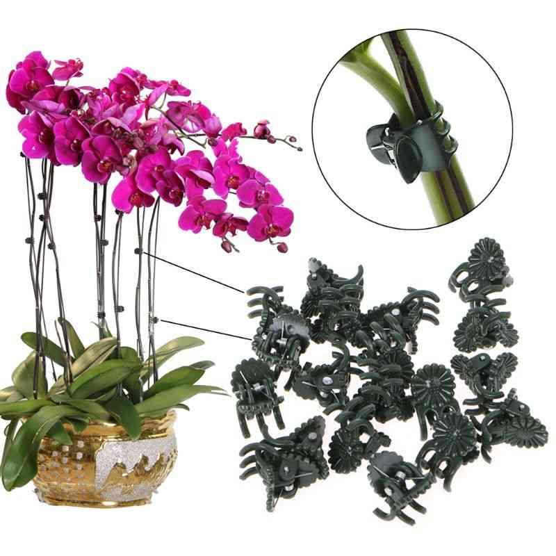 Orchid Stem Clip For Vine Support  - Vegetables Flower Tied Bundle Branch Clamping Garden Tool