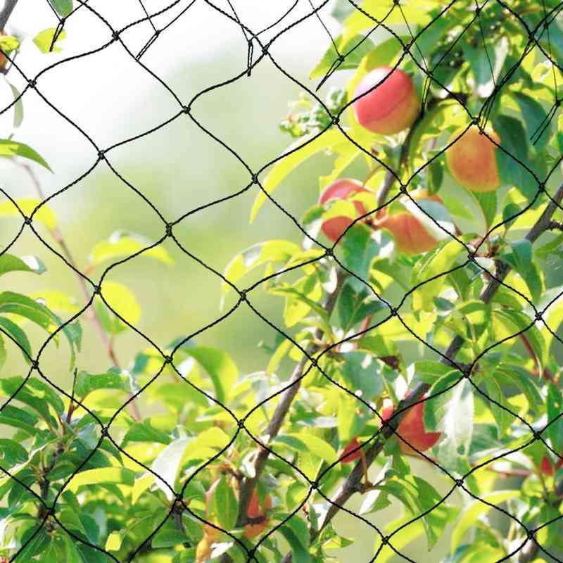 Anti Bird Netting-reusable, Long Lasting