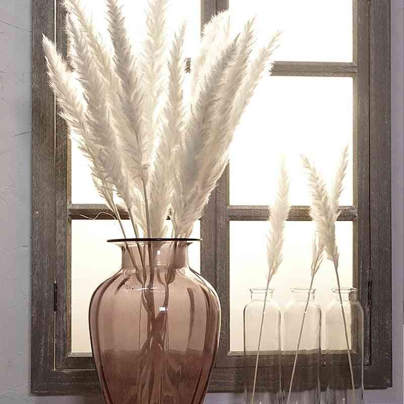Natural Dried Bulrush-artificial Plants For Wedding, Home Decor