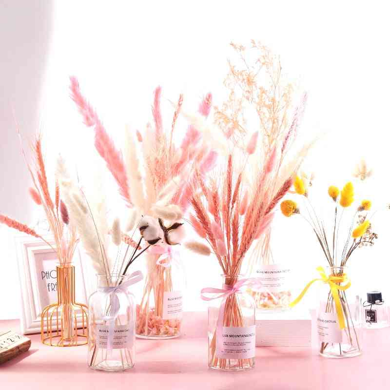 Bulrush Natural Dried Flowers Small Pampas Grass - Phragmites Diy Artificial Flowers Plants For Home, Wedding Decoration