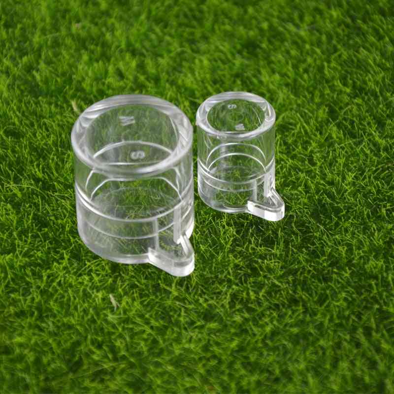 Acryl And Round Shape Water Feeding Area For Ants Or Insect