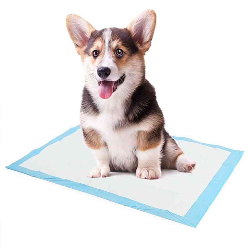 Super Absorbent Pet Diaper Dog Training Disposable Pee Pads - Healthy Nappy Mat For Cats, Dog