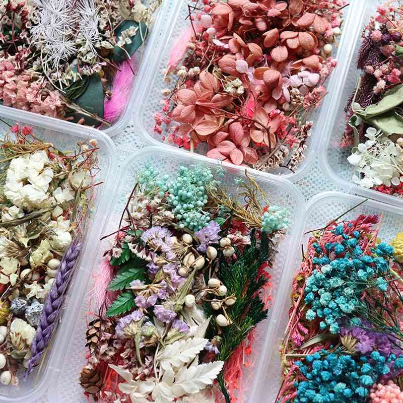 Real Dried Flower For Aromatherapy , Candle, Soap Making And Epoxy Resin Jewelry