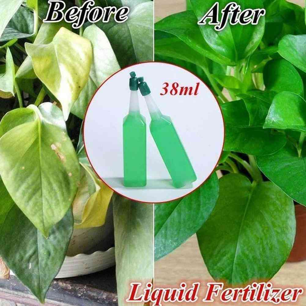 Hydroponic Plant Nutrient Fertilizer Solution - Potted Green Concentrated Foliar Seed Fertilizer