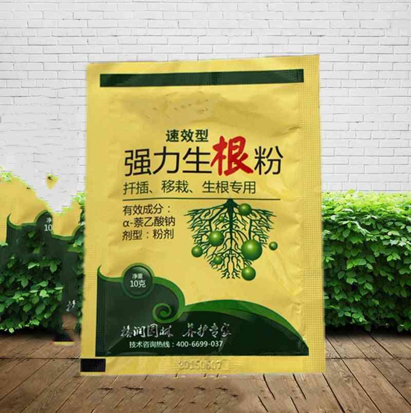 10gm Plant Rapid Growth Regulator Root Powder For Garden Bonsai