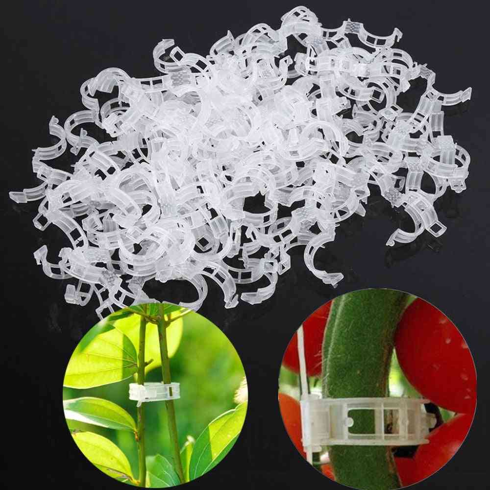 Plant Support Clips For Greenhouse Vegetables / Plants Protection Or Hanging
