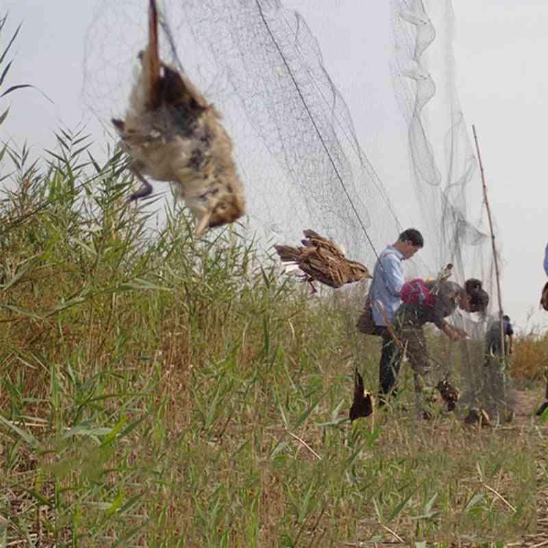 Bird Catcher Net, Pond Net, Fishing Net, Crops Fruit Tree Vegetables Flower Garden Mesh Protect Pest Control