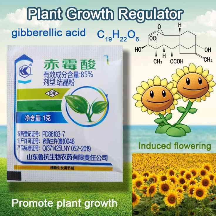 Concentrate Gibberellic Acid Increase Plant Growth Fertilizer
