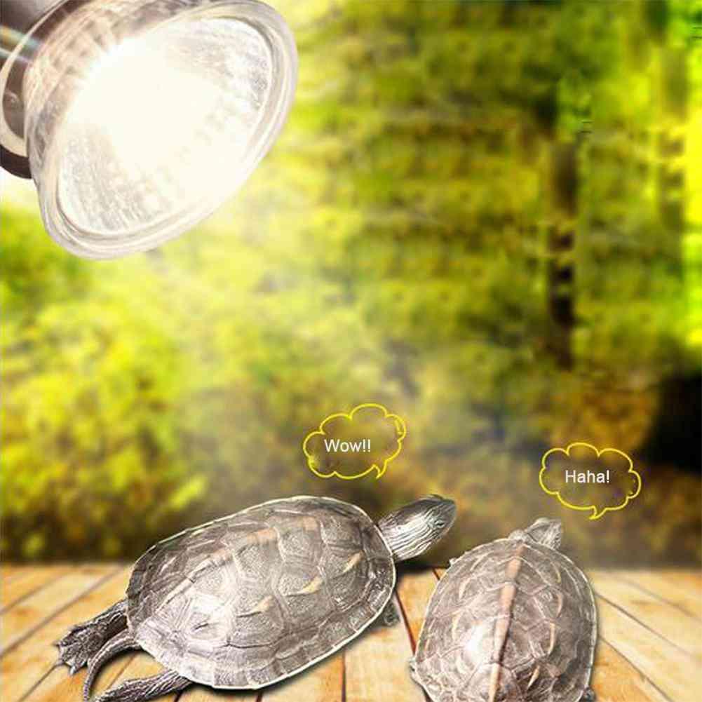 Uv Light Bulbs Heating Lamp - Amphibians Lizards Temperature Controller