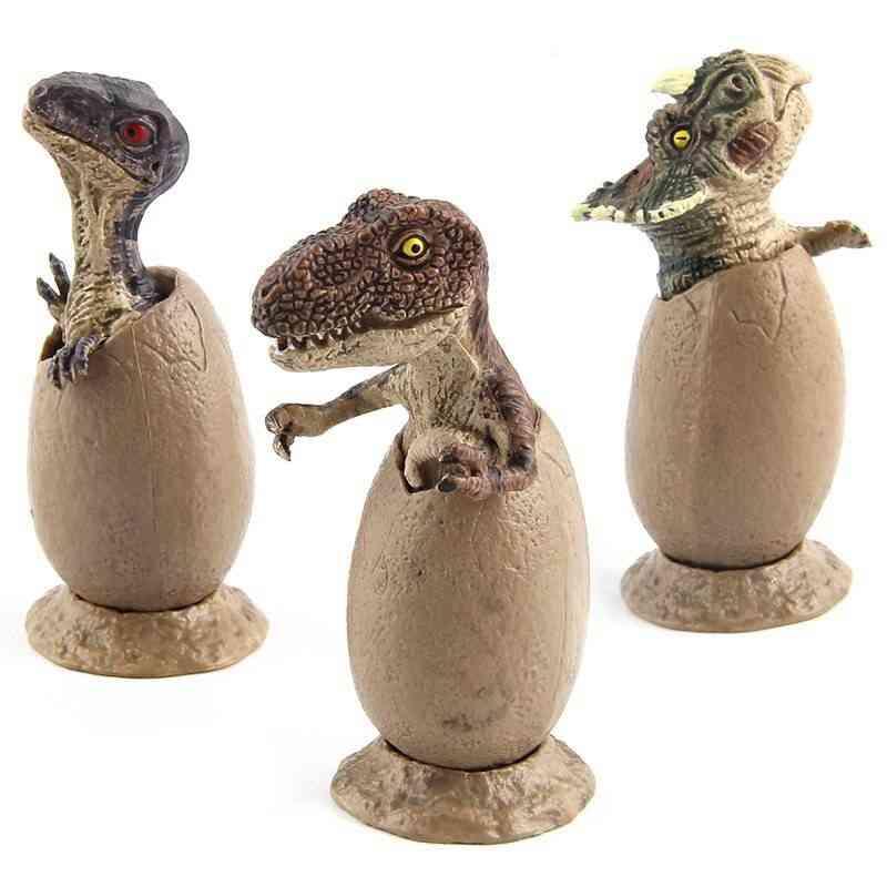 Dinosaur Handmade Model Half Hatched Egg Model