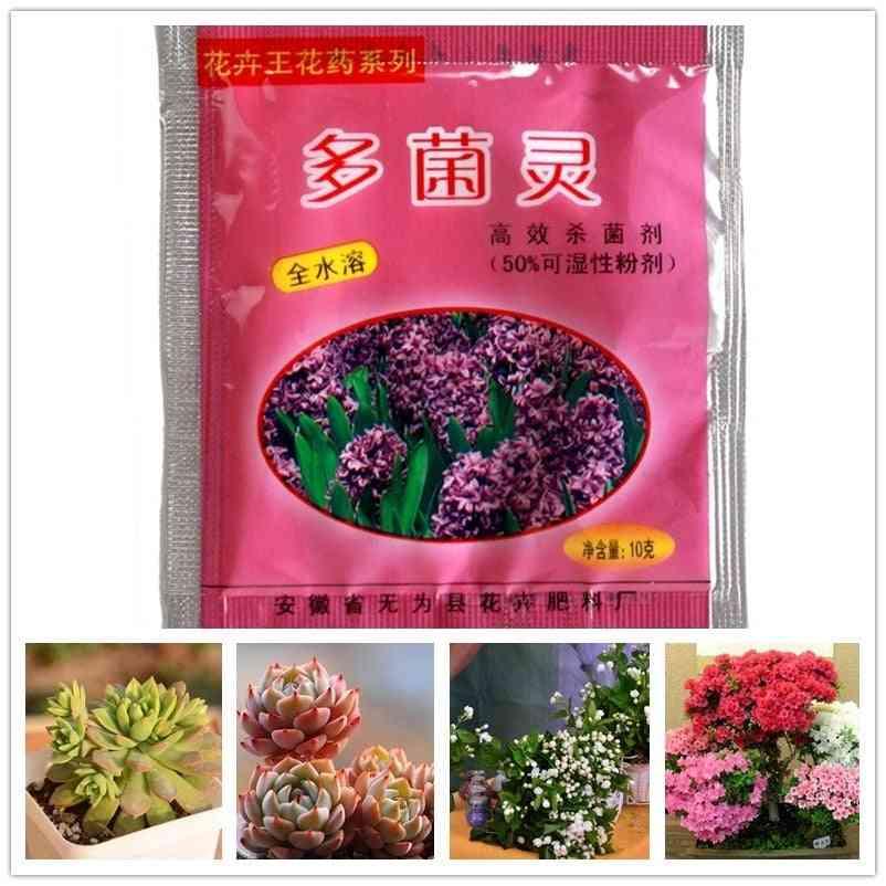 Carbendazim Bulbs Plants, Rooting Growth Hormone - Pharmacy Fertilizer Plant
