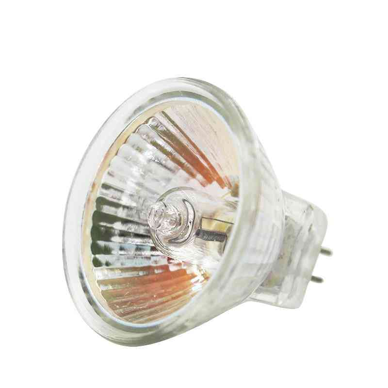 Halogen Bulb - Clear Glass Dimmable Spot Lights, Warm White