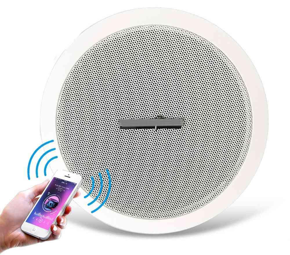 10w Built-in Bluetooth Amplifier- Full Range6