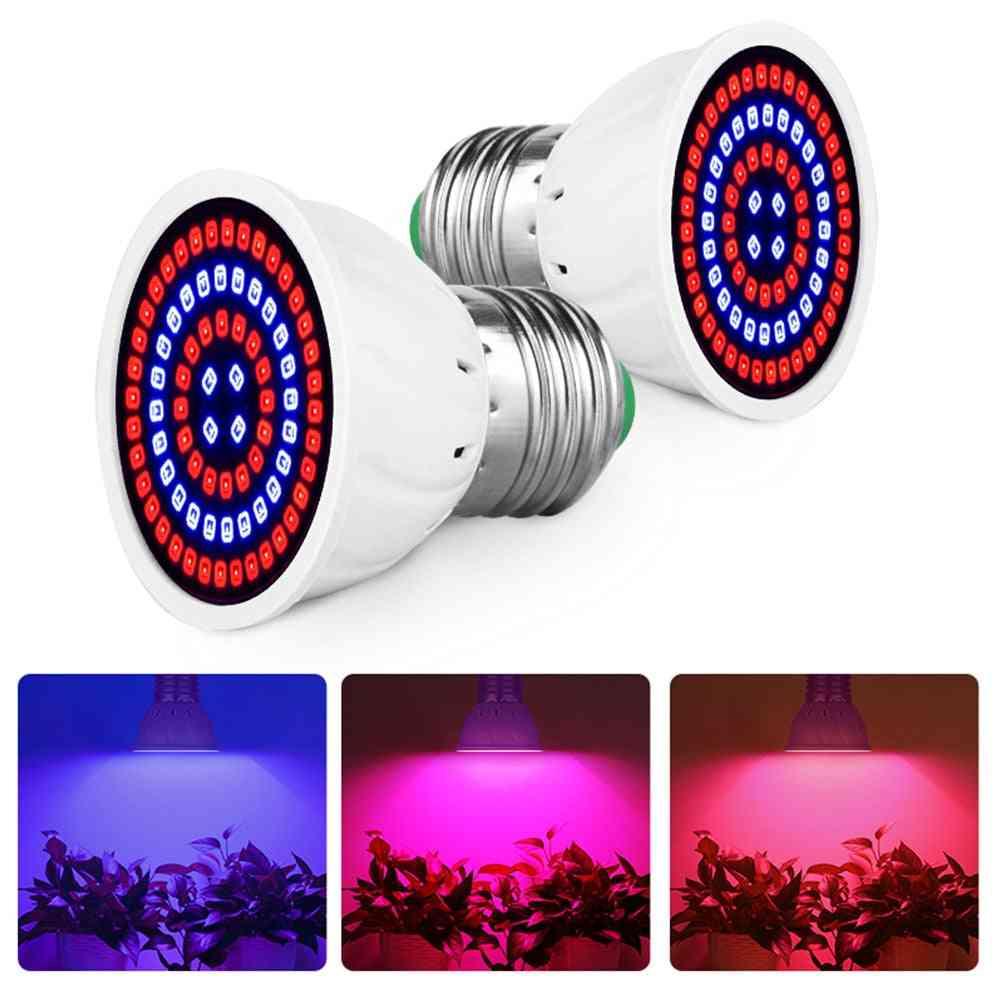 Led Grow Light Bulb For Indoor Plants - Full Spectrum Lamp Garden Decorate