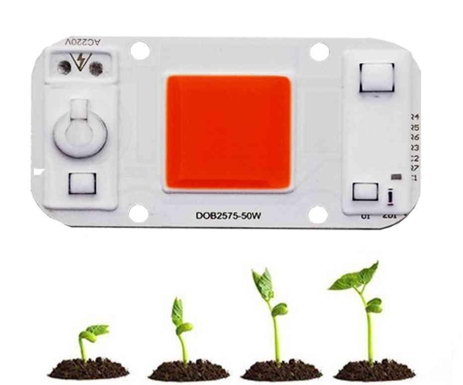 Led Plant Grow Light Driveless - Cob Chip Full Spectrum