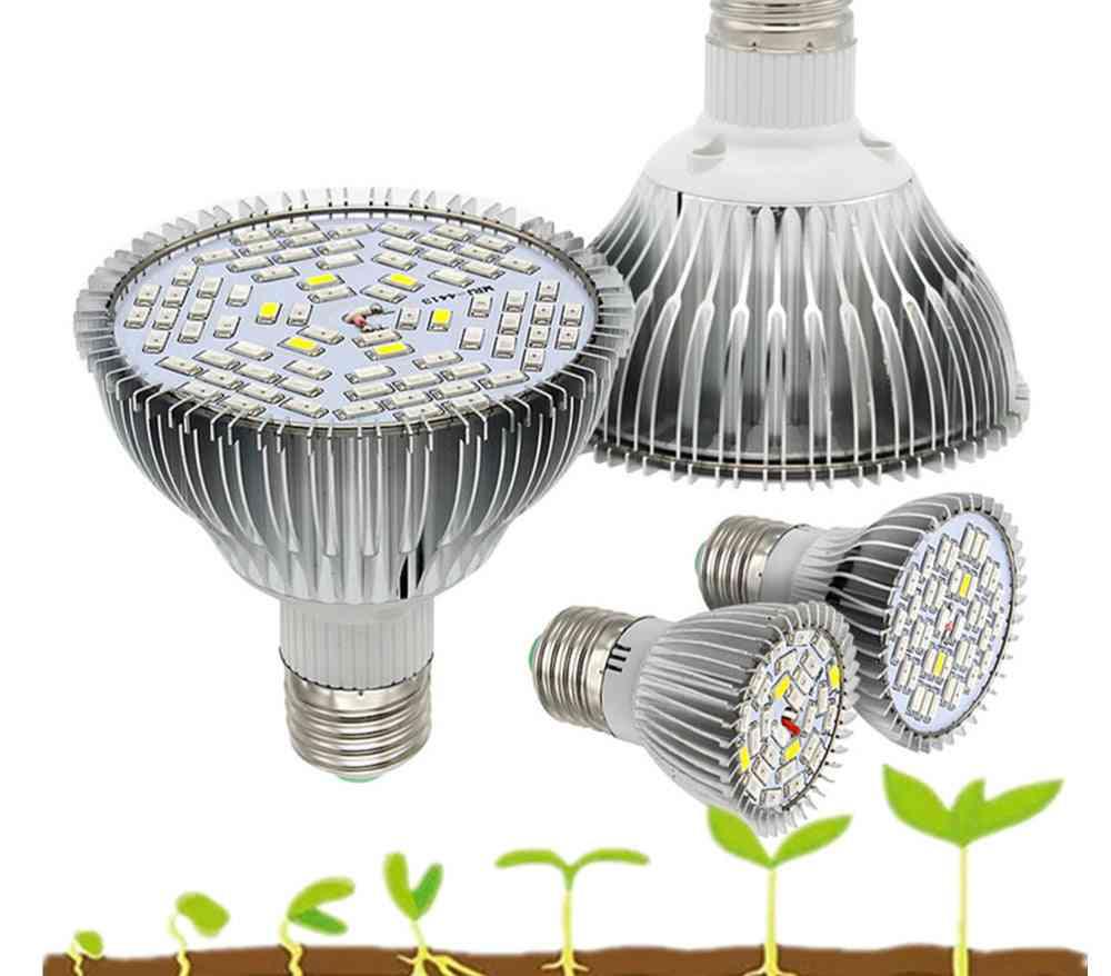 Full Spectrum E27 Led Grow Light - Uv Ir Lamp
