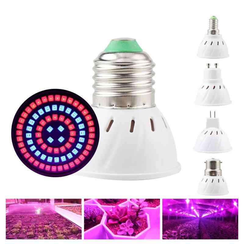 Led Grow Light Bulb - Growing Lamp Full Spectrum