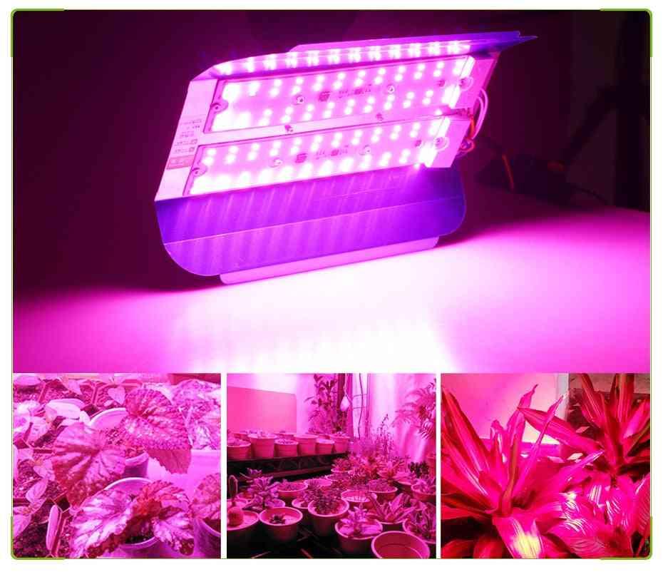 Led Plant Grow Light - Waterproof Full Spectrum Cob Lamp
