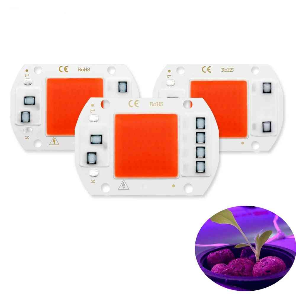Led Grow Light Phyto Lamp -full Spectrum No Need Driver For Growth Flower