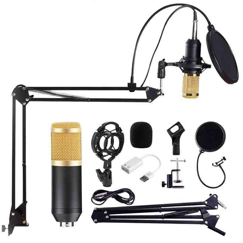 Professional Studio Microphone For Radio Braodcasting Singing Mic Holder, Sound Computer Recording