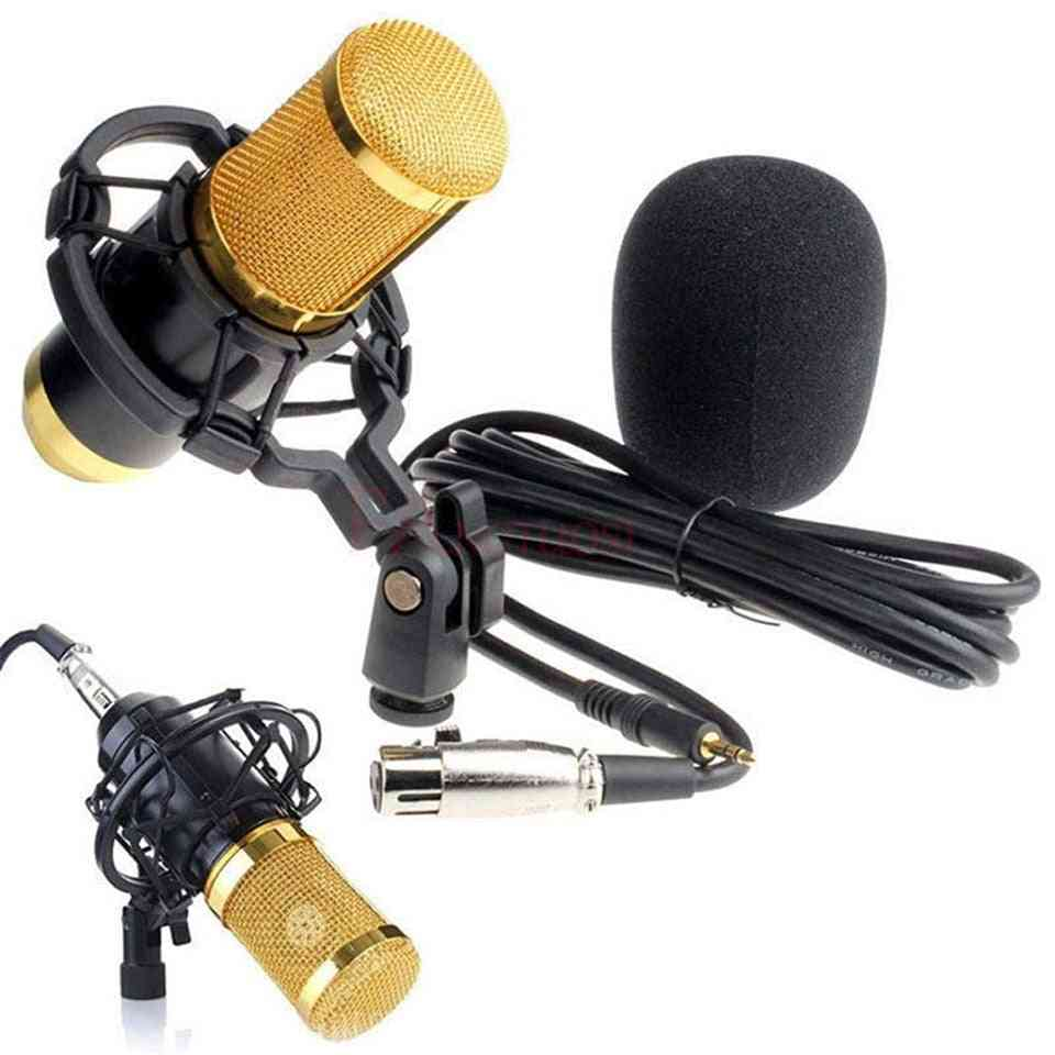 Condenser Sound Recording Microphone With Shock Mount For Radio