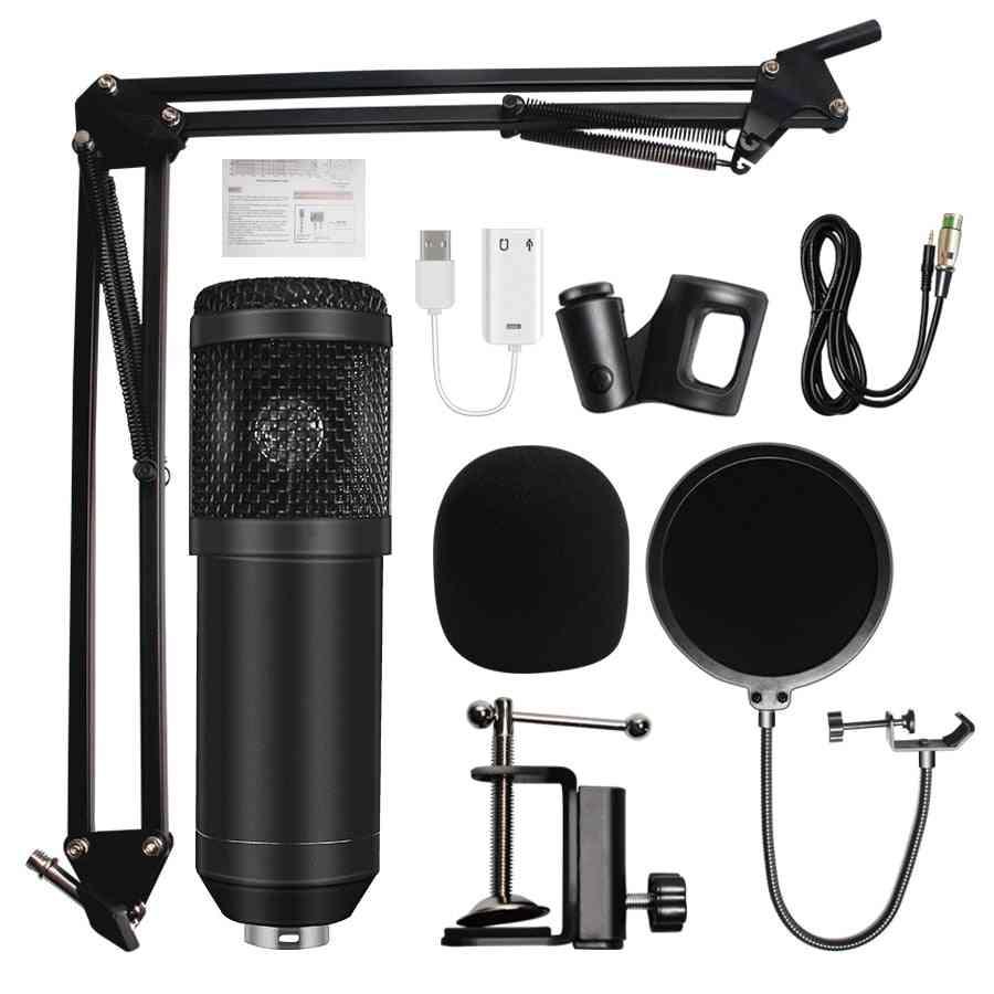 Professional Microfone -condenser Sound / Recording Microphone