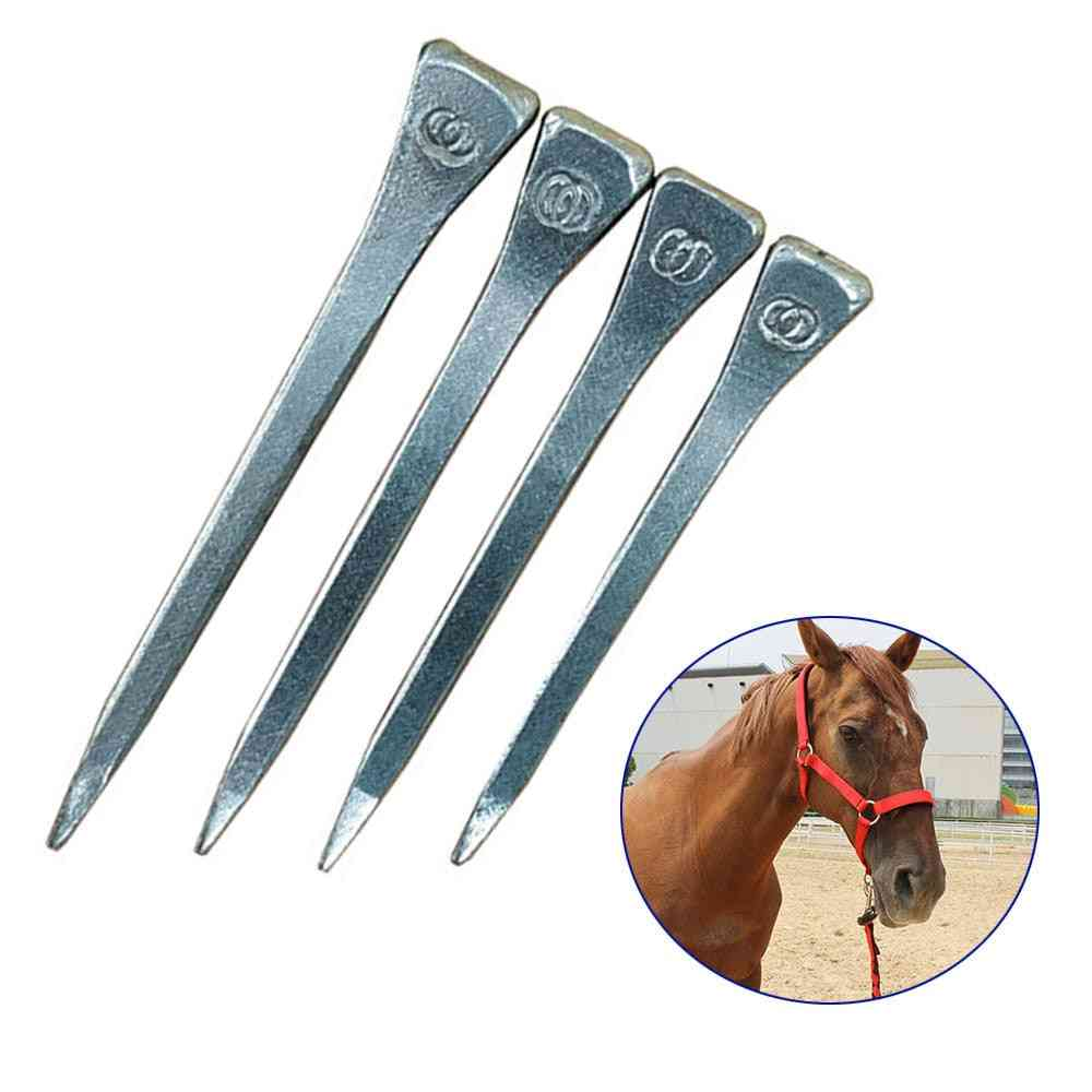 Stainless Steel Horse Shoe Nails/studs