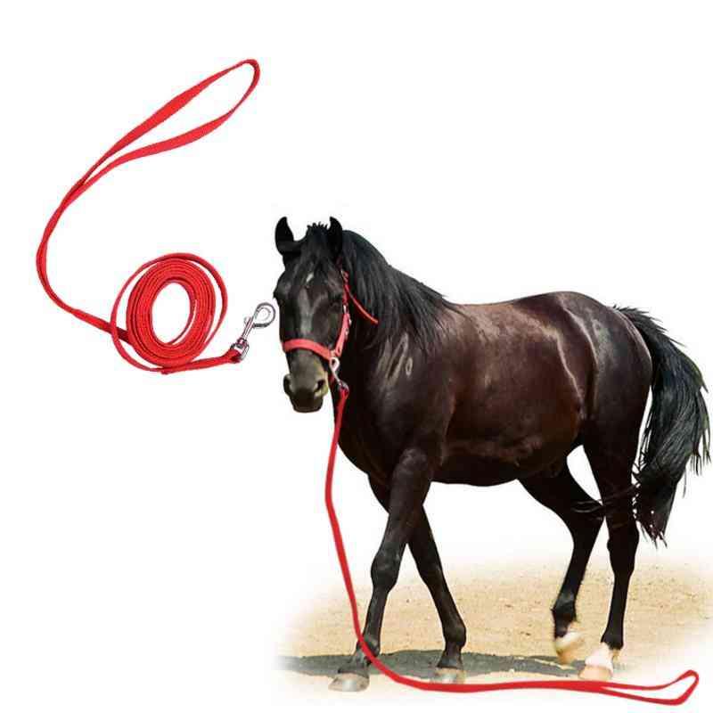 Halters Horse Reins Riding Equipment With Bit & Fixed Rein Belt