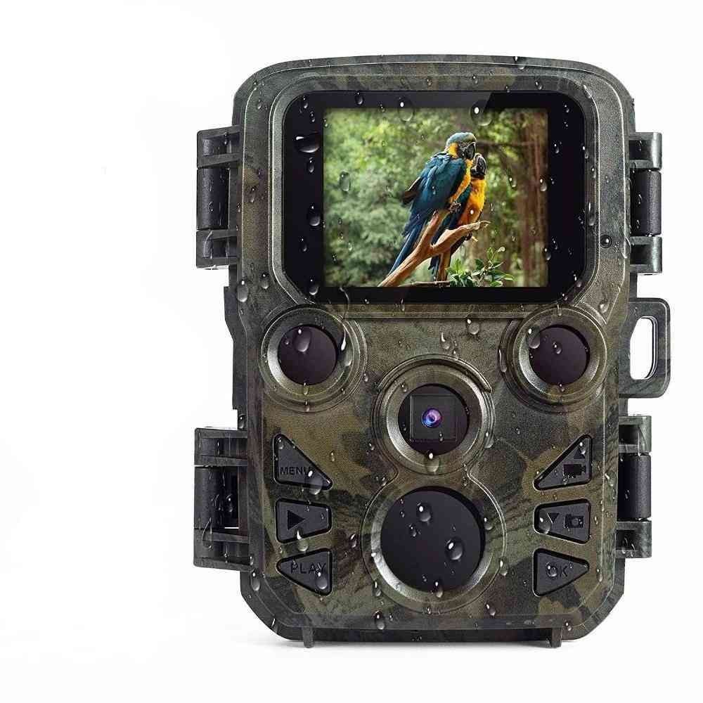 Full Hd Wildlife Scout Camera With Night Vision