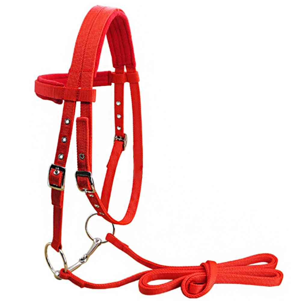Adjustable Horse Halter-riding Equipment