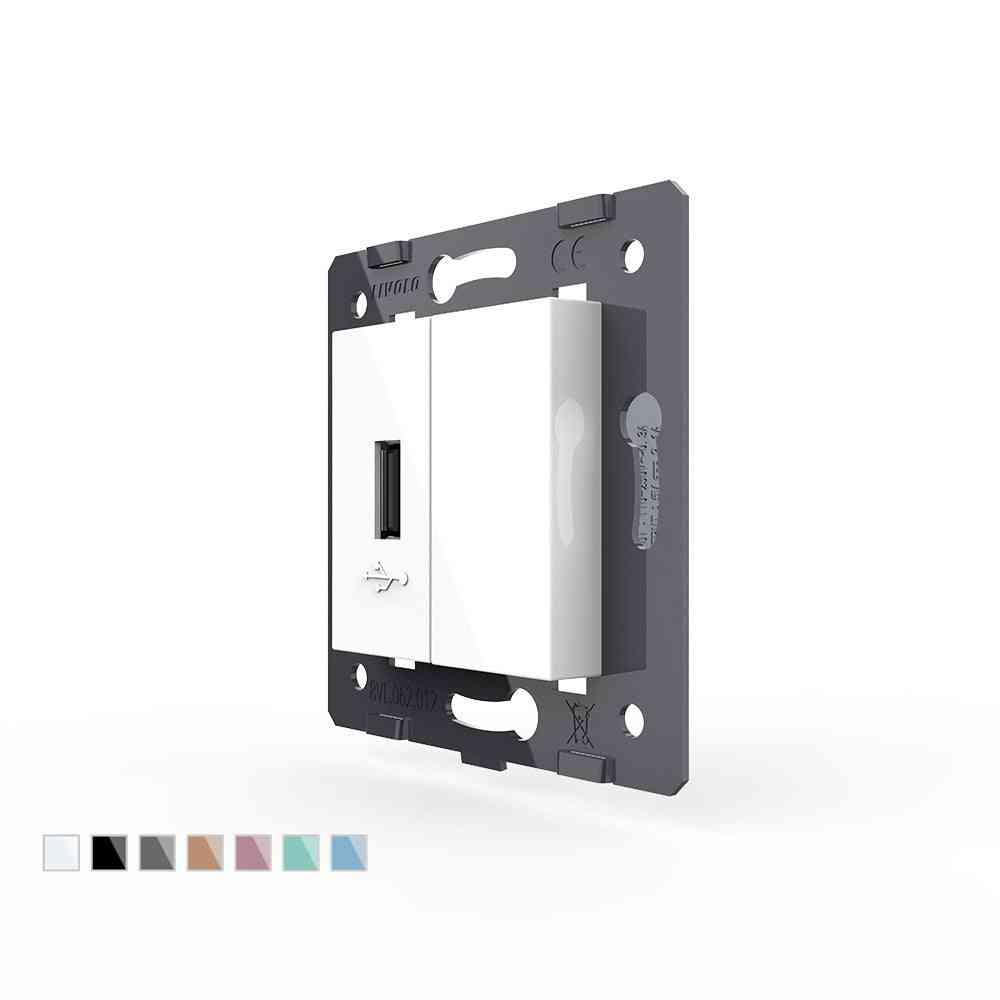 Plastic Eu  Standard Usb Socket Module