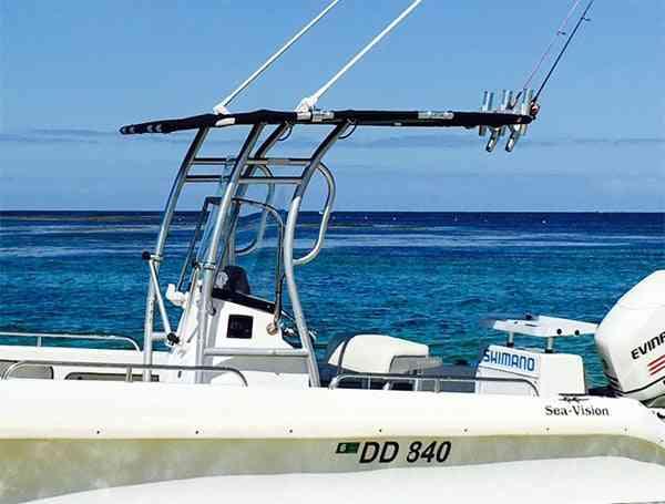 Dolphin Pro2 Boat T-top & Fishing Rod Rocket Launcher
