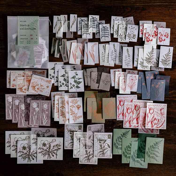 Sketch Collection Botany Material Paper Diy Handmade Dry Kraft