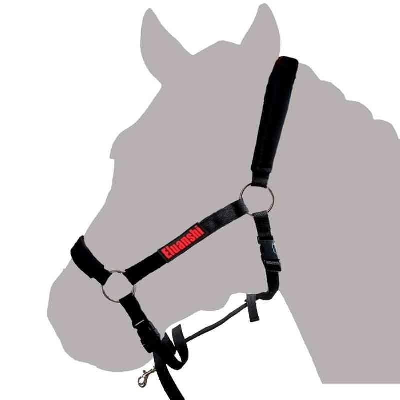 Bridle Textile Set, Riding Horse Racing Saddle Pad