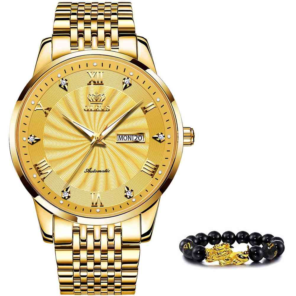 Top Brand Luxury Automatic Watch Sport Stainless Steel Waterproof Watch