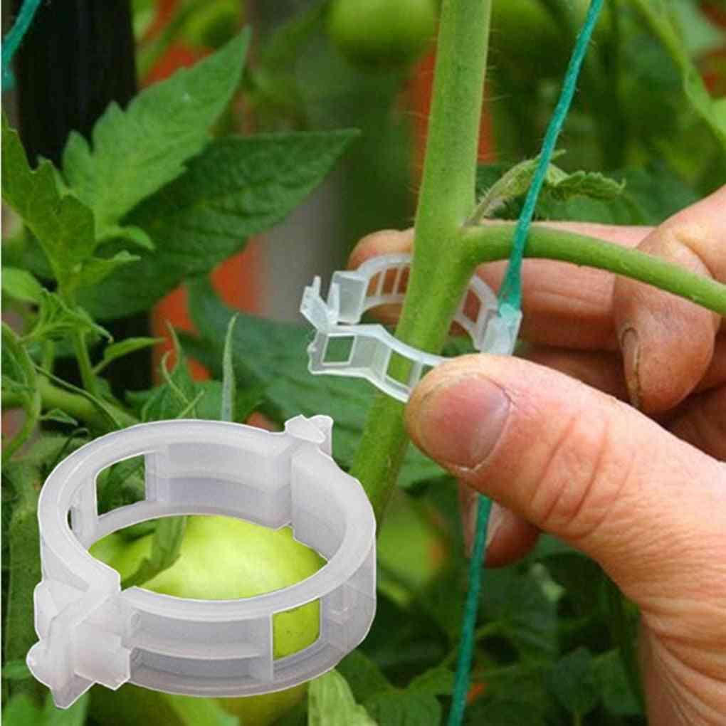 Muluna Reusable Plastic Plant Support Clips