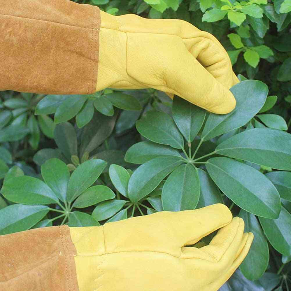 Long Sleeve, Protective Gloves For Trimming, Thorn Cut, Rose Pruning, Beekeeping And Gardening