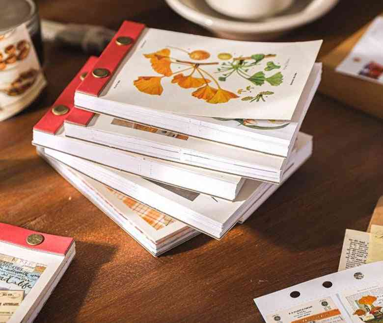 Medieval Material Paper Cards