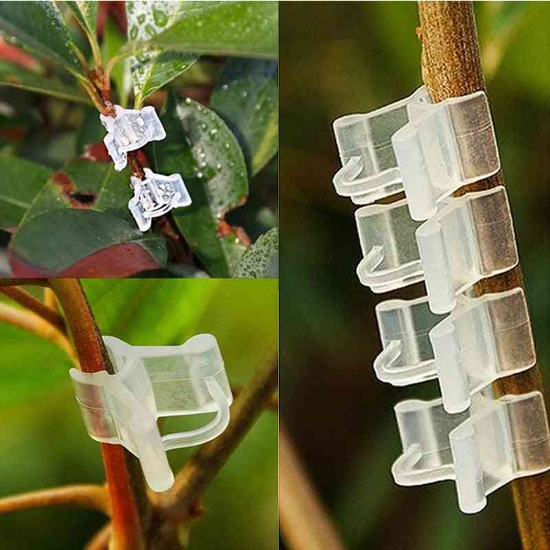 Plastic Plant Support Clips For Eggplant Plants Grafting Clip Fixed Vegetables / Garden Ornament