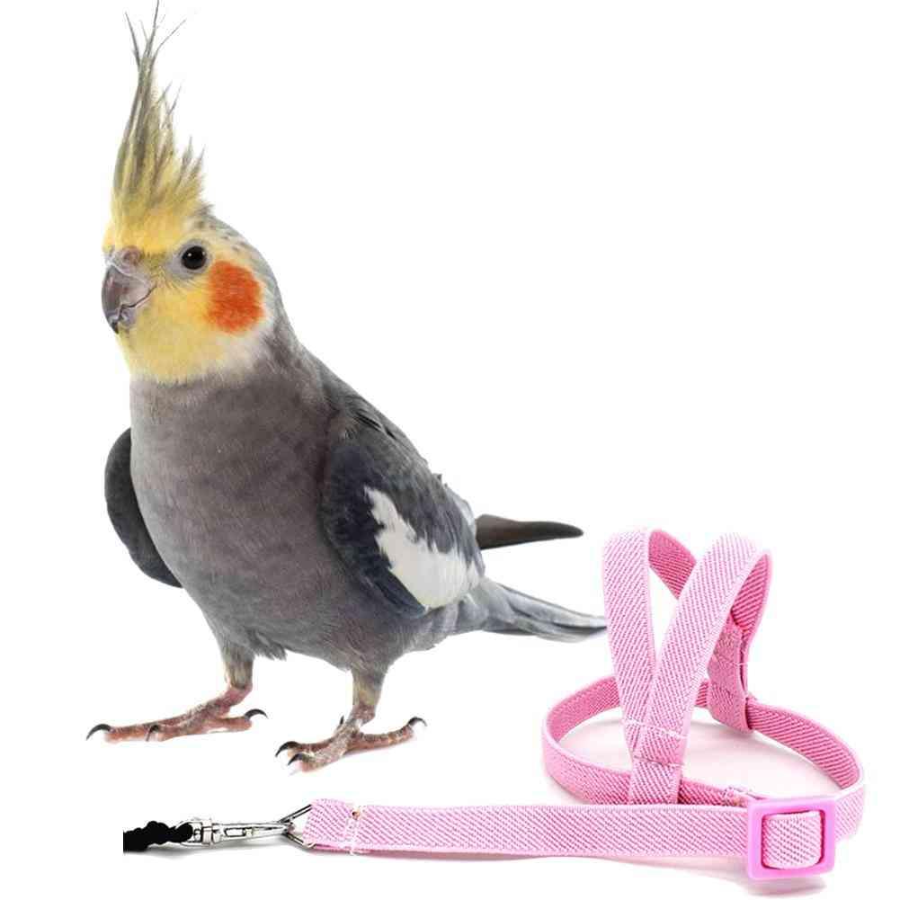 Anti-bite Flying Training Rope, Parrot, Bird, Leash