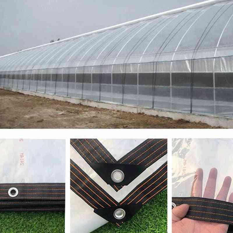 Various Size Pe Tarp Highly Transparent Cover Home Garden Rain Sails Waterproof Tarpaulin