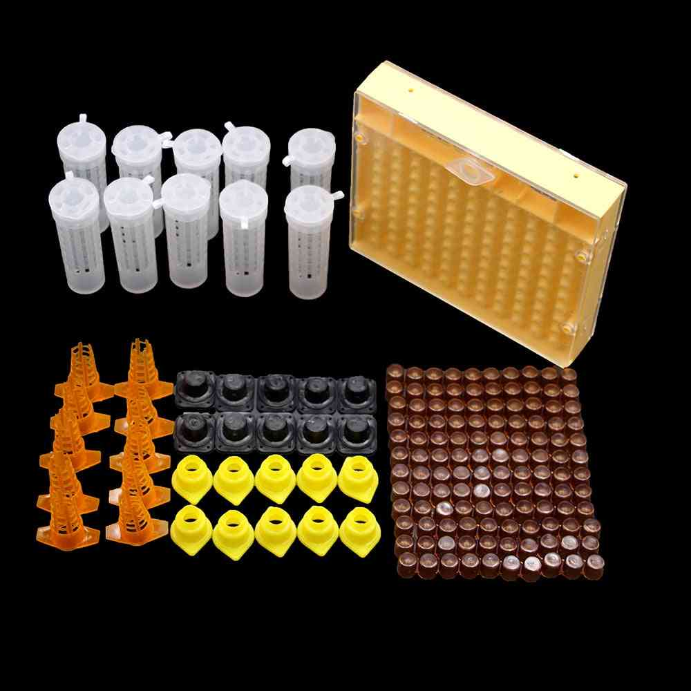 1set King Queen Bee Rearing System Box,  Plastic Cup Cell Protection Cover Cage (apiculture Kit M)