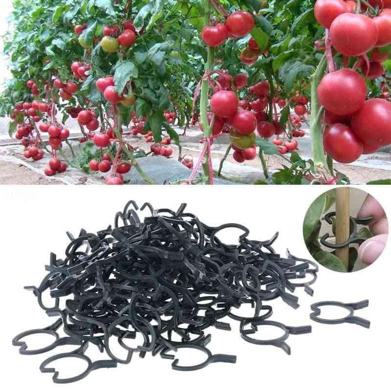 Plant Garden Clips Vegetable Vine Support For Holding Stems