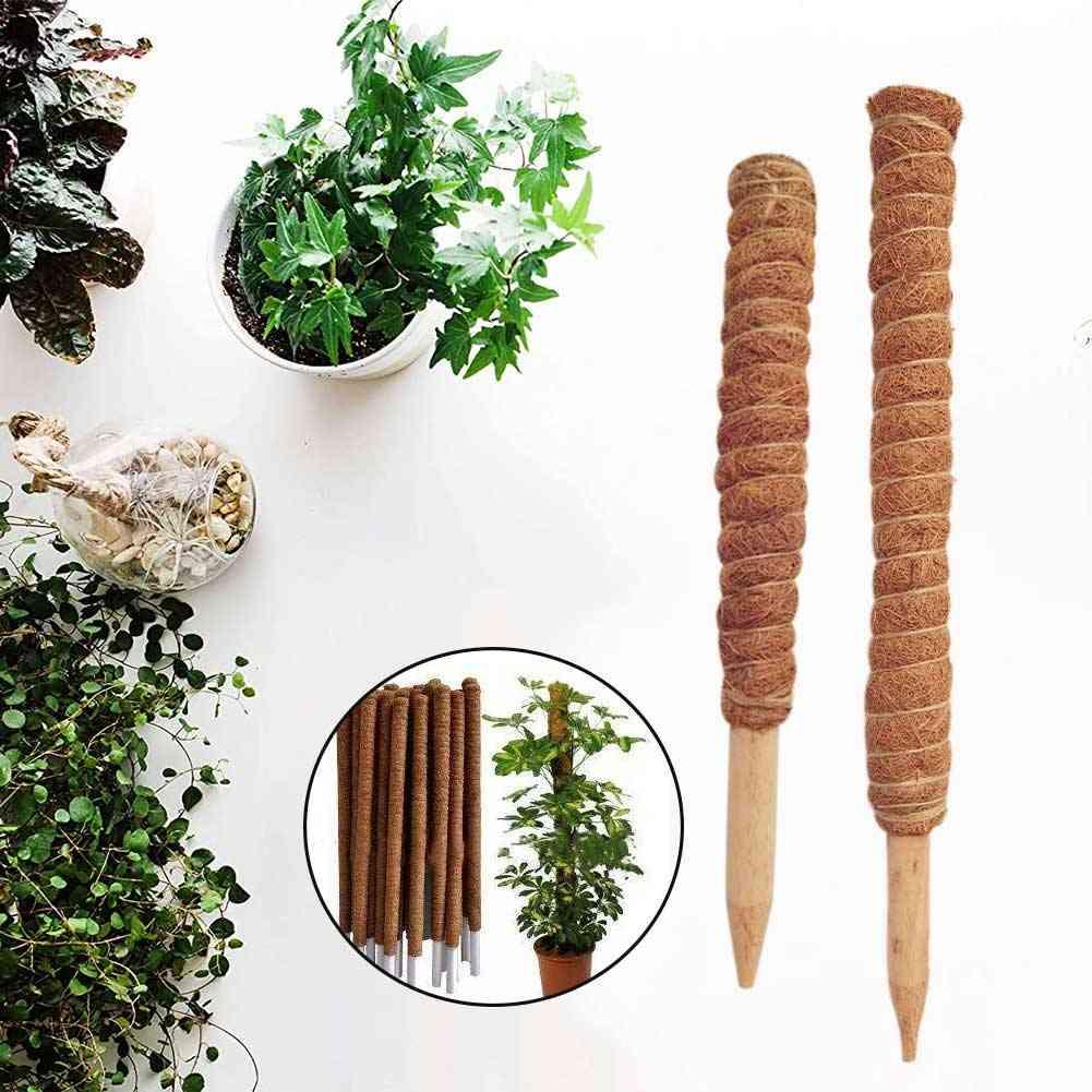 Home Support Coir Totem Pole Climbing Plants Stick, Office Extension, Coconut Fiber Creeper, Trelli Frame, Maintain Moisture Balcony