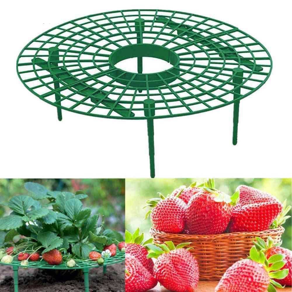 Strawberry Stand Frame Holder, Balcony Planting Rack, Fruit Support, Plant, Flower, Climbing Vine Pillar Gardening Stand