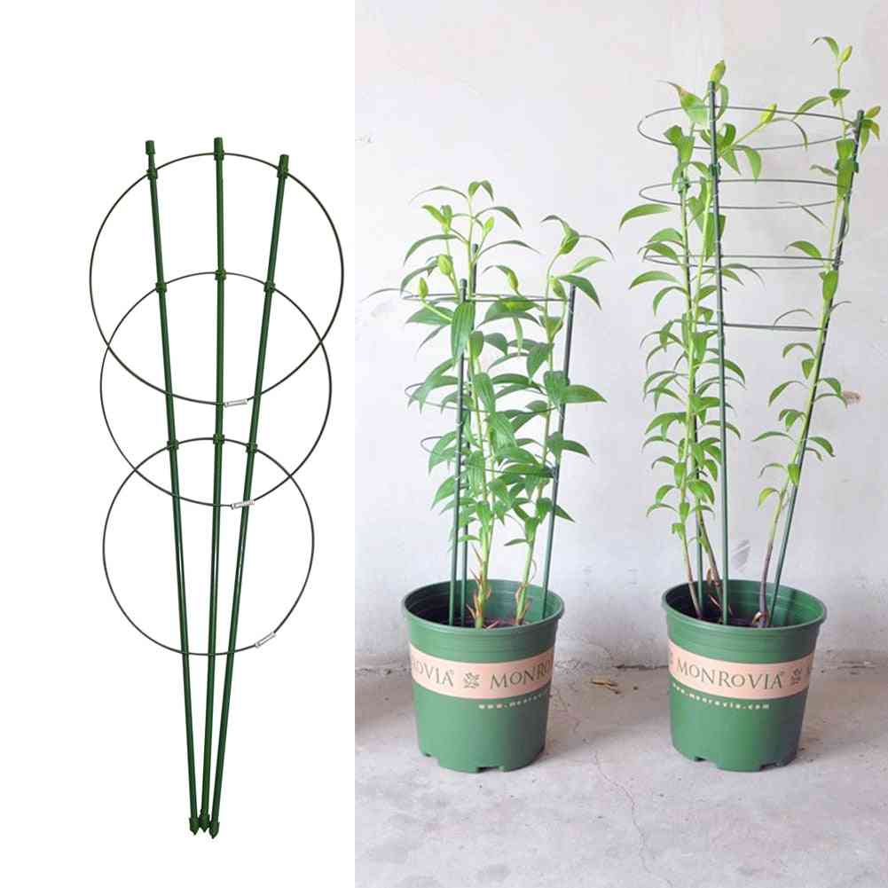 Climbing Vine Rack, Plant Support Frame, Plastic Coated, Steel, Flower, Vegetables, Decorative Trellis Bracket