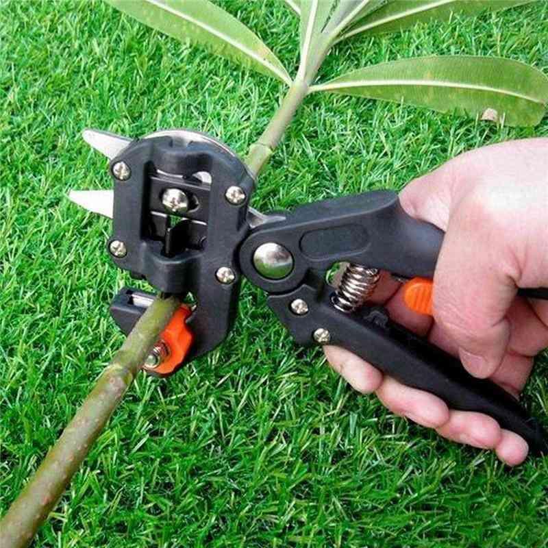 Pruner Garden Grafting Tool, Professional Branch Cutter, Secateur Pruning Plant, Shears Boxes Fruit Tree  Scissor