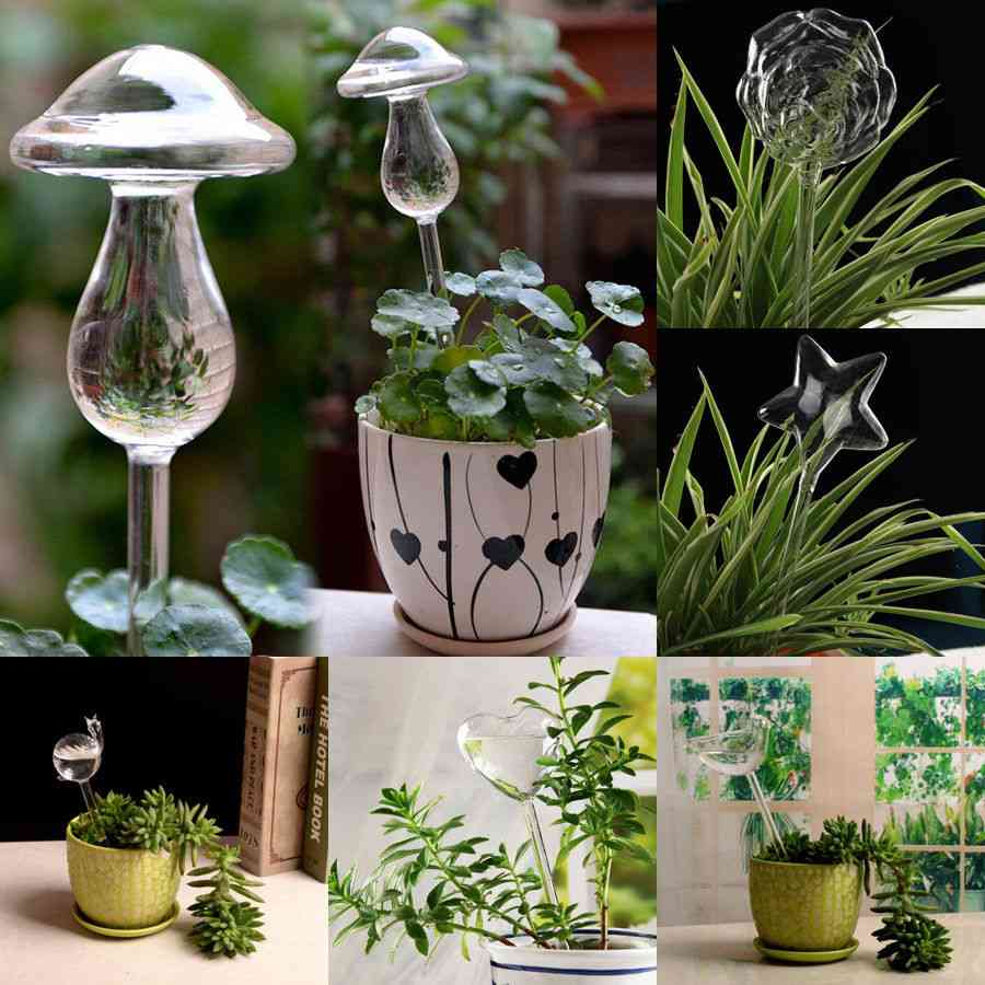 6-types Glass Plant Flowers, Water Feeder, Automatic Self Watering Devices